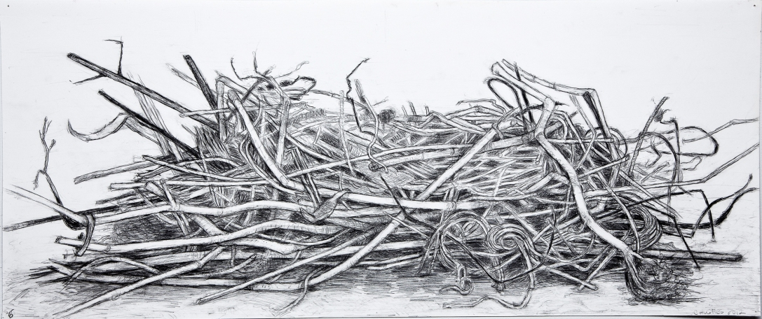 Compost Pencil, No. 6