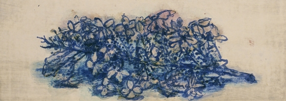 Hydrangea No. 14
